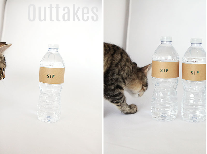 Sip water bottle cardstock label for guest tray
